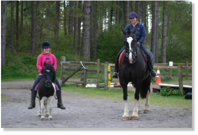 Pembrey park riding centre based in pembrey country park, offering livery services, horse riding, treking, beach rides, riding lessons, with qualified staff servicing burry port, pembrey, kidwelly, swansea and all of carmarthenshire